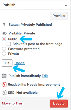 visibility-public-post-wordpress